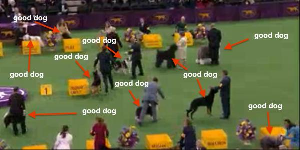 gooddogs-0